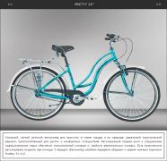 Sale of Kinetic bikes, Winner, Cyclone